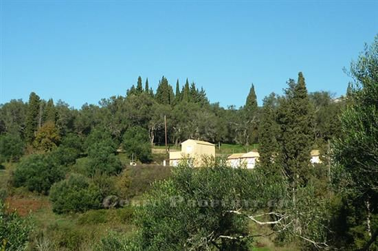 For Sale Bargain property near Paliokastritsa, Corfu