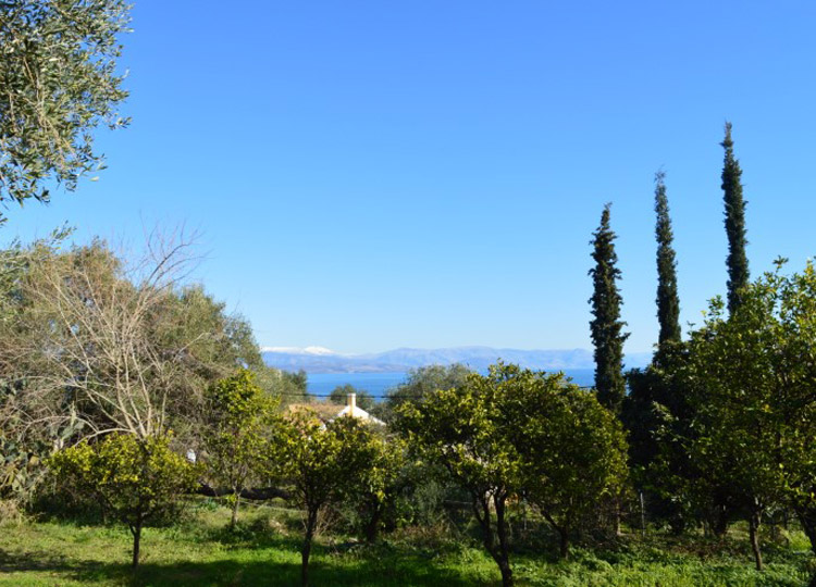 For Sale. Land with sea view above Dasia, North East Corfu