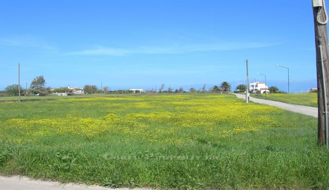 For sale. Land at the sea, in Almiros, on North East Coast of Corfu