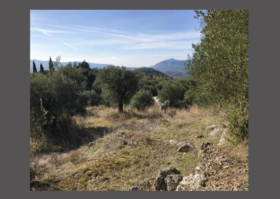 For Sale land in Kato Korakiana area, North East Corfu